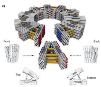 nature origami 1